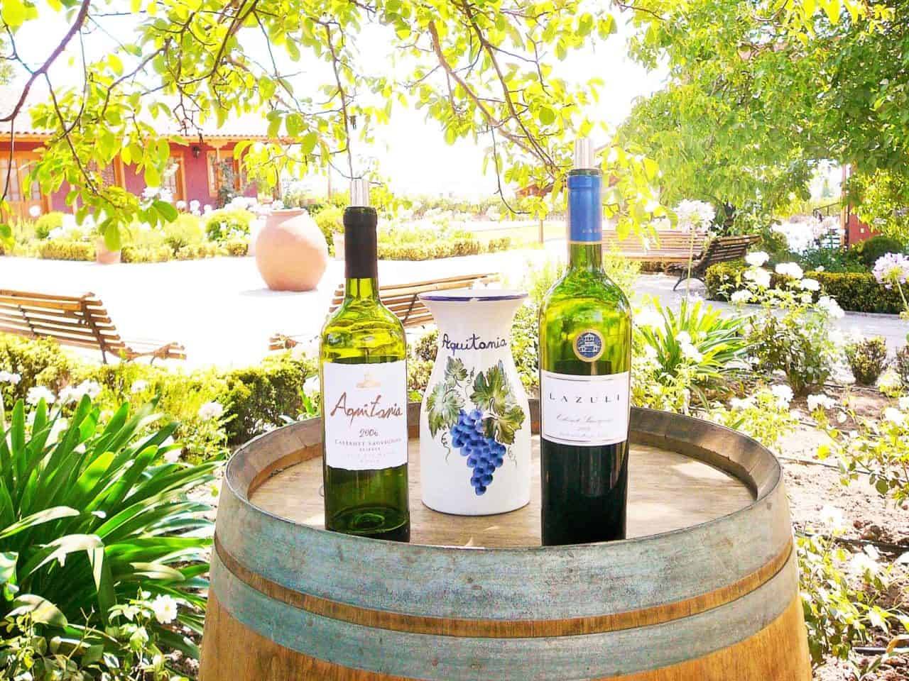 Family Owned Wineries Chile Off Track