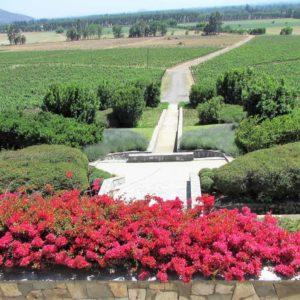 Winery Tour Santiago Chile