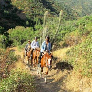 Horseback Riding Tour Santiago