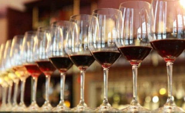 Wine Tour Chile